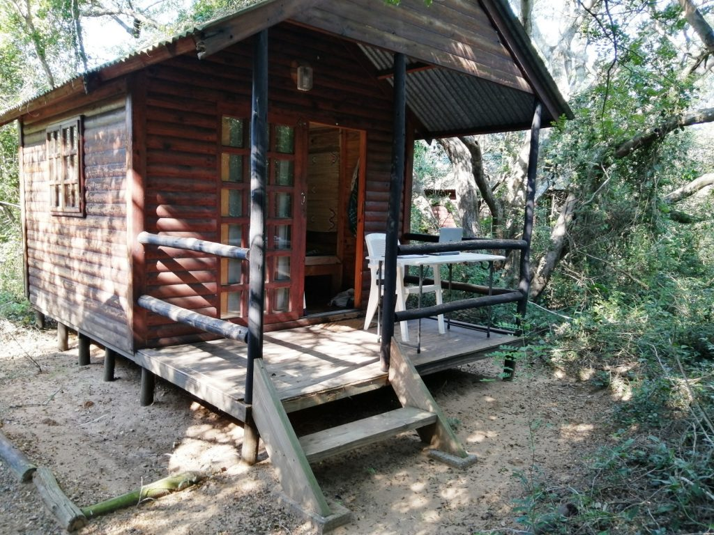simple living on the leopard survey