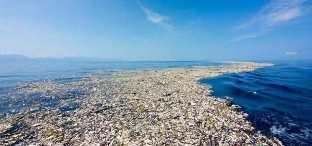 A sea of plastic: Helping the oceans from our homes